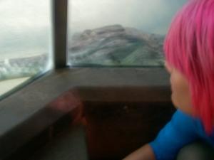 zoo-trip-8-8-09-027 me and croc